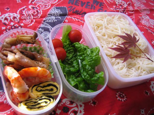 すべての折り紙 箸置き 折り方 折り紙 : 暑い夏のお弁当には、ツルツル ...